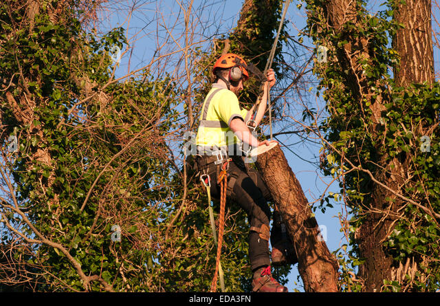Safety Harness Stock Photos & Safety Harness Stock Images ...