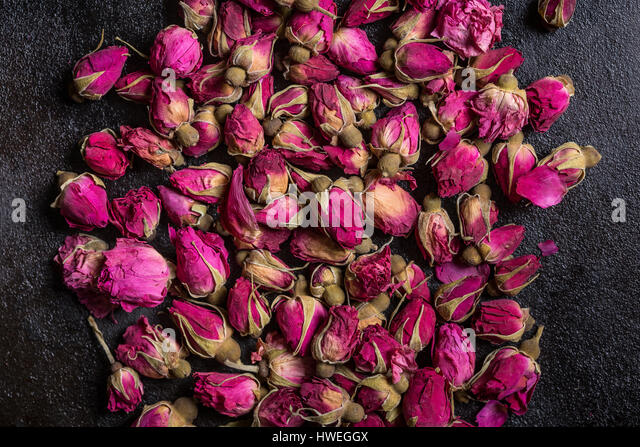 Dried rose buds - Stock Image