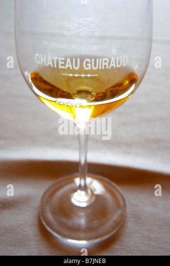 glass with wine chateau guiraud sauternes bordeaux france - Stock Image