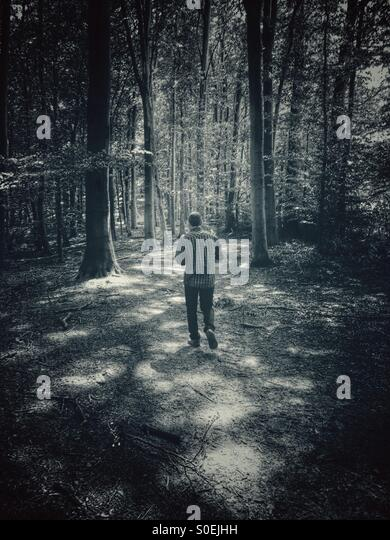 Man walking in the woods - Stock Image