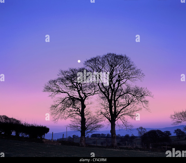 Dusk descends as a full moon rises on a calm winter evening in rural North Wales. - Stock Image