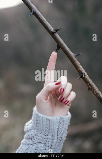 Women's  hand stinging by a thorn. Dangerous concept - Stock-Bilder