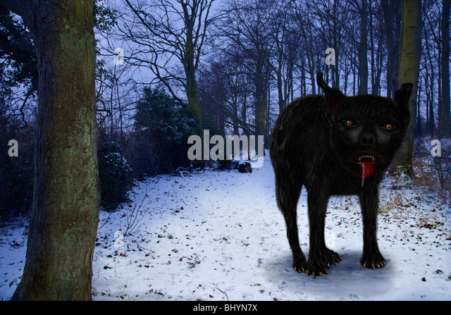 The 'East Anglian' mythical huge black dog, known as Black Shuck. - Stock Image