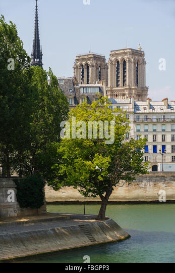 Tip of Ile Saint Louis with towers and spire of Notre Dame de Paris Cathedral on Ile de la Cite, along the Seine - Stock Image