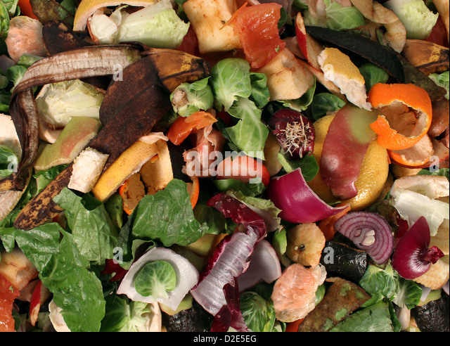 Composting pile of rotting kitchen fruits and vegetable scraps as a banana peel orange and onion garbage waste for - Stock Image