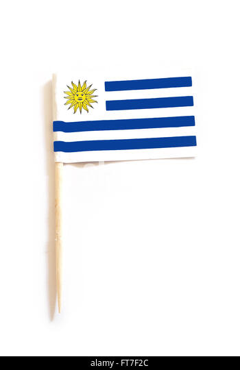 toothpick with the flag of Uruguay - Stock Image