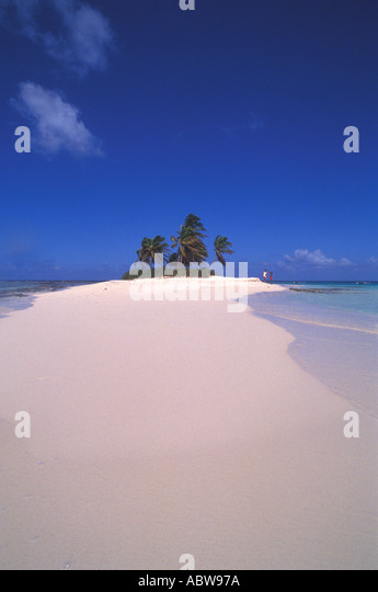 TROPICS Small Deserted Island with Palm Trees - Stock Image
