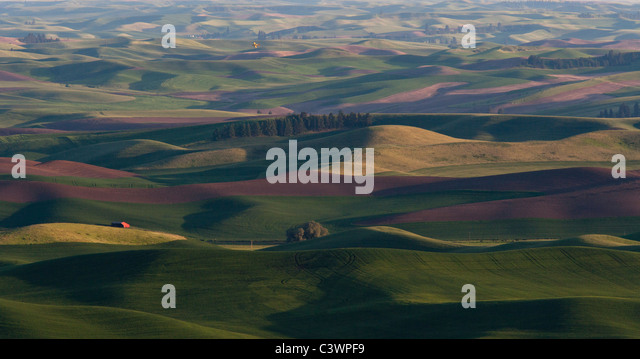 Palouse Fields Viewed From Steptoe Butte and Crop Duster, Eastern Washington - Stock Image