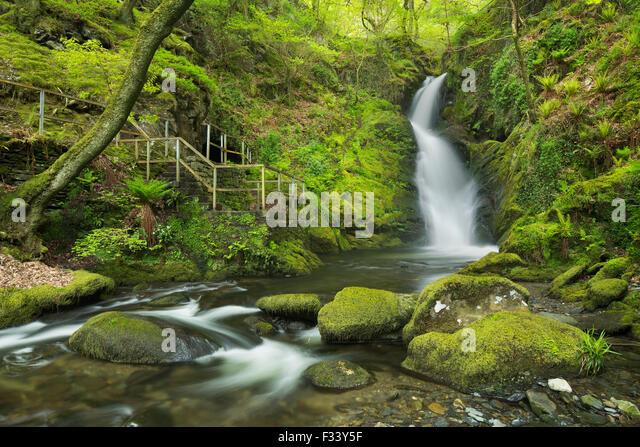 Dolgoch Falls, Gwynedd, Wales, UK - Stock Image