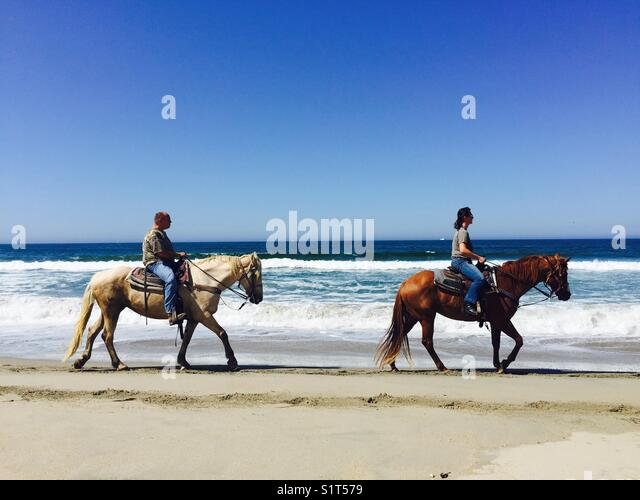 Riding horses on the beach - Stock Image