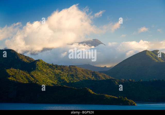 Queen Charlotte Sound, South Island, New Zealand - Stock-Bilder