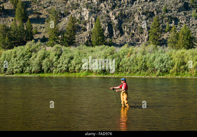 Big hole river stock photos big hole river stock images for Big hole river fly fishing