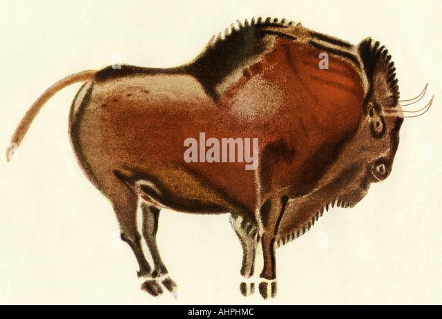 Prehistoric cave painting of a bull Altamira Spain - Stock-Bilder
