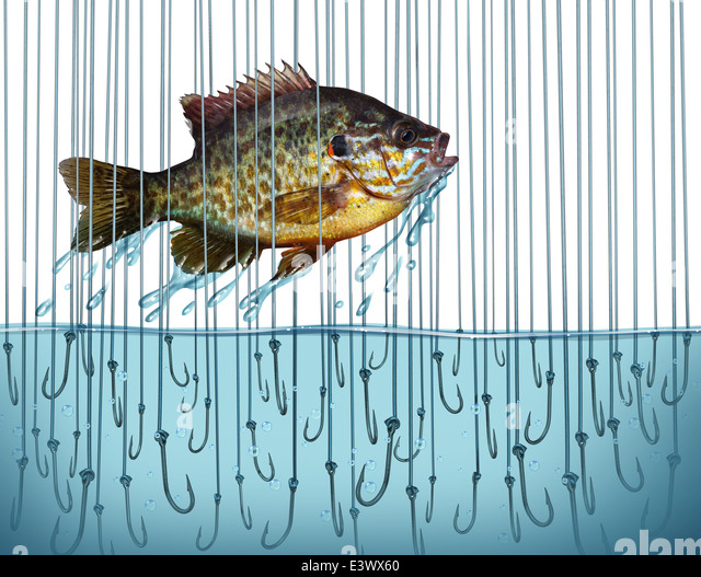 Avoid risk escape danger as a business metaphor with a jumping fish breaking free out of water that is full of sharp - Stock Image