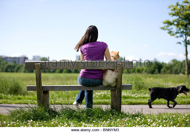 A young woman and her dog sitting on a bench, watching another dog go past - Stock Image