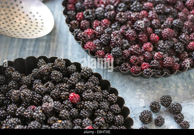 blackberries for home baking a pie or crumble, against green marble, - Stock-Bilder