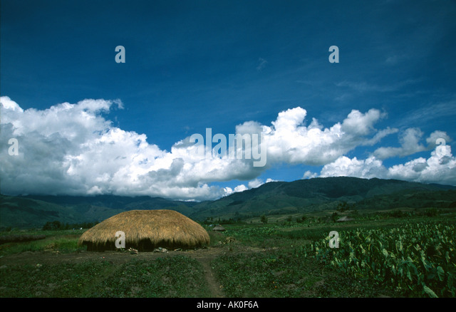 Hut in Papua Irian Jaya Indonesia - Stock Image