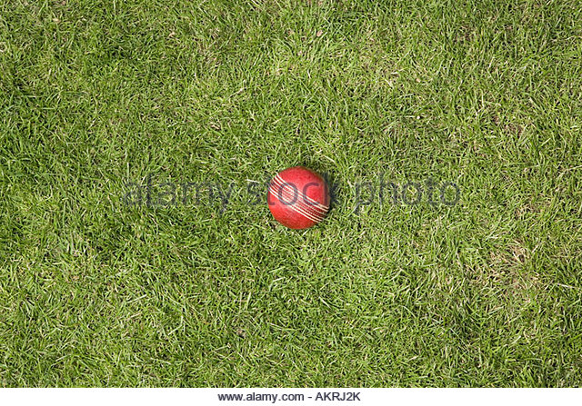 A cricket ball on grass - Stock Image
