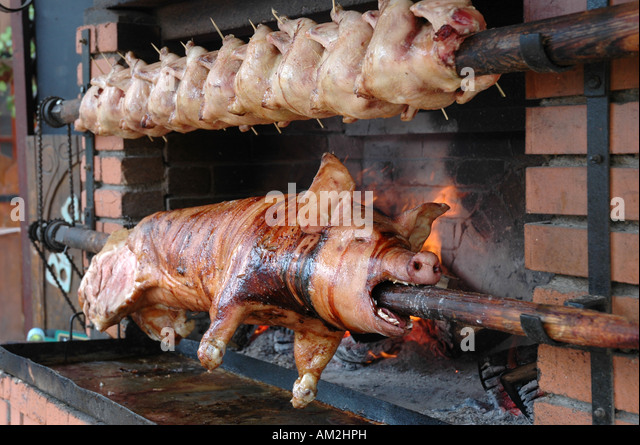 how to build a pig spit