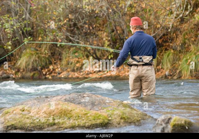 Steelhead stock photos steelhead stock images alamy for Fly fishing for steelhead