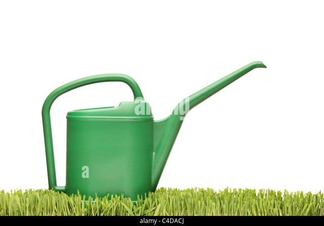 A watering can on a green grass - Stock Image