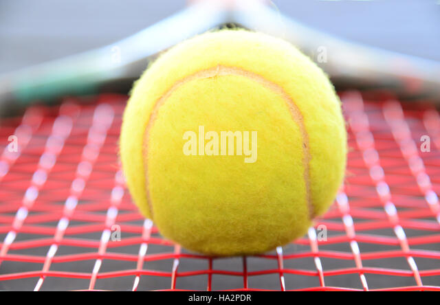 Close-up of a tennis ball on a tennis racquet - Stock Image