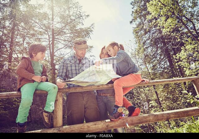 Family in forest, looking at map, low angle view - Stock Image