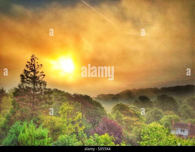 Misty morning - Stock Image