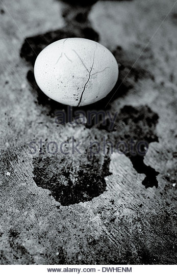 A cracked egg, at the site of a Buddhist temple shrine, Chaiyaphum province, Thailand, South East Asia. - Stock Image