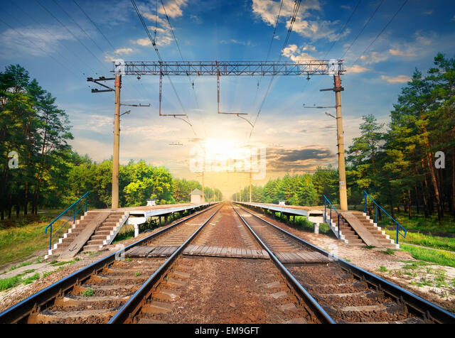 Stairs on a railway station in the forest - Stock Image
