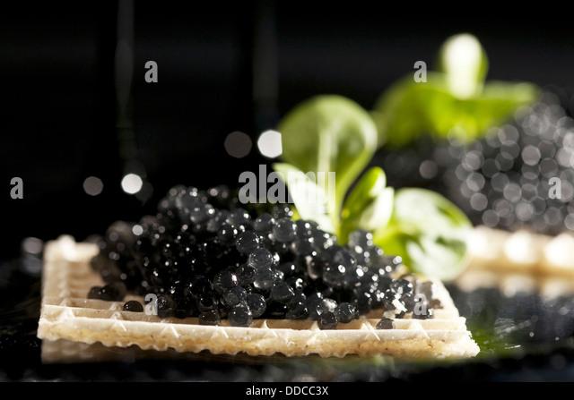 Sandwiches with black caviar on black background - Stock-Bilder