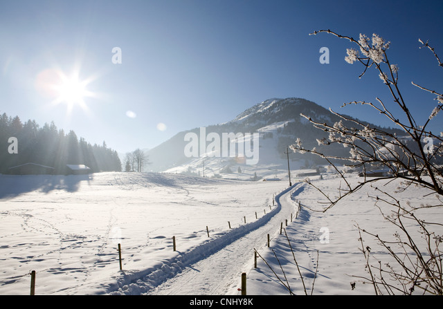 Snow covered landscape, Kirchberg, Tirol, Austria - Stock Image