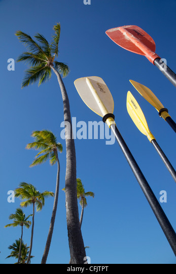 Palms and paddles, Bavaro Beach, Punta Cana, Dominican Republic, West Indies, Caribbean, Central America - Stock Image