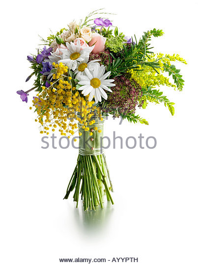nose gay poesy - Stock Image