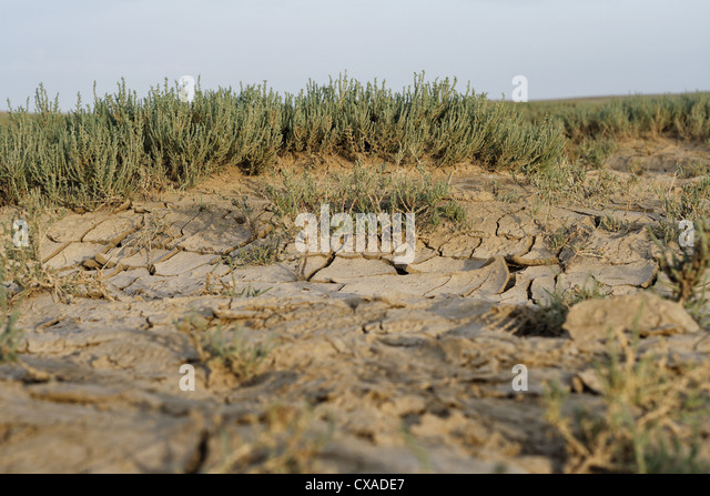 background, catastrophe, clay, climate, cracked, desiccated, detail, disaster, dried, drought, dry, earth, environment, - Stock Image