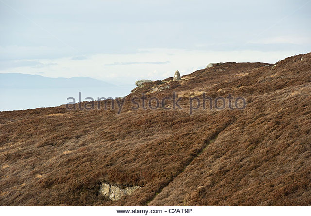 helicopter crash mull of kintyre with Crash Site on Helicopter Crash likewise Severe Delays South Of Lincoln After Serious A1 Lorry Crash as well 2623 Trumps Scabbed Up Boeing Death as well Crash Site besides Military Helicopter Crash.