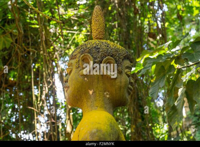 Benin, West Africa, Ouidah, deity figure in kpasse sacred forest - Stock-Bilder