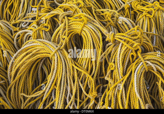 Oysterville Washington USA Rows of coiled yellow rope commercial fishing gear - Stock Image