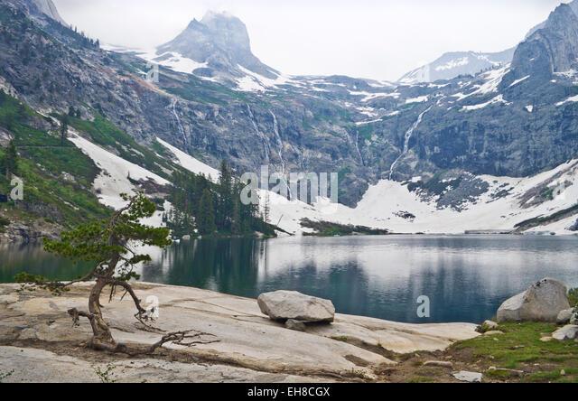 Canyon Lake (Ca) United States  city images : Sequoia And Kings Canyon Stock Photos & Sequoia And Kings Canyon Stock ...