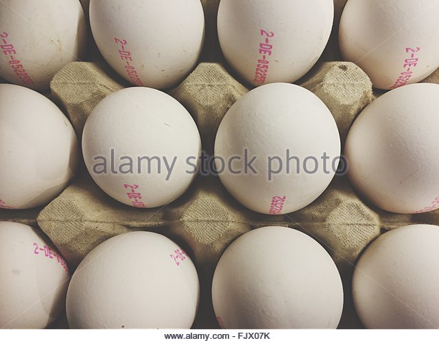 Full Frame Shot Of Eggs In Carton - Stock-Bilder