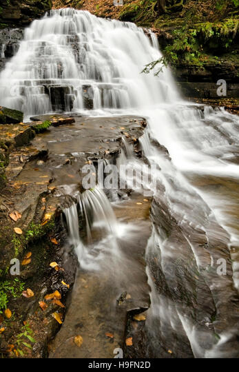 Pennsylvania waterfall landscape Salt Springs State Park Susquehanna County, Montrose Pennsylvania USA. - Stock Image