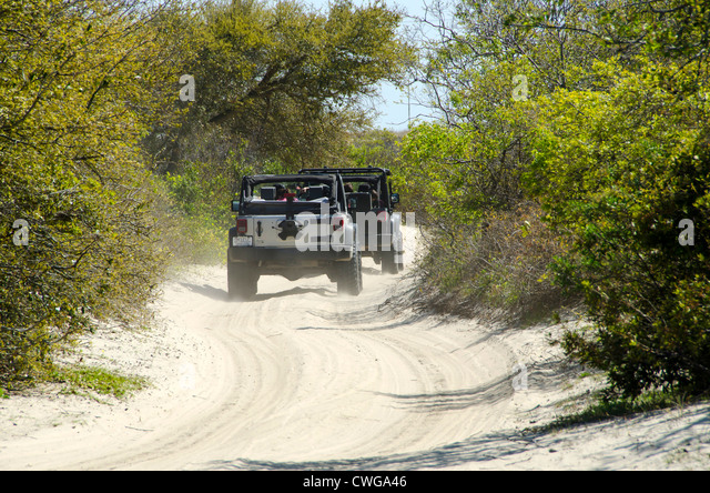 Four wheel drive vehicles driving on sand road on the Outer Banks, North Carolina - Stock Image