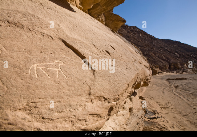 Rock-art in a wadi in the Eastern Desert of Egypt, North Africa - Stock Image