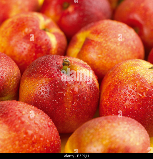 group shot of nectarines with water droplets - Stock Image