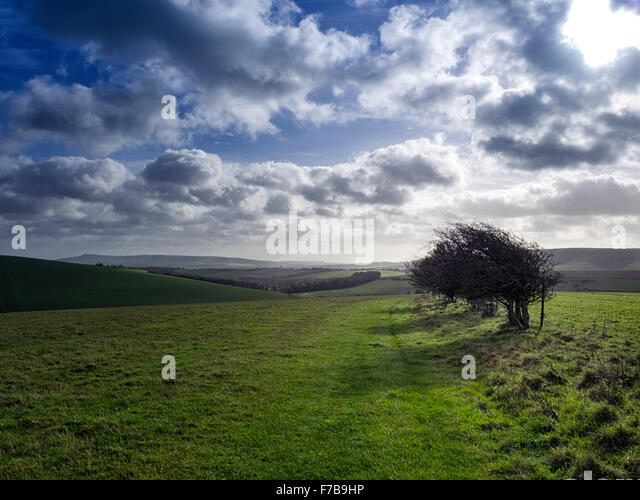 South Downs Way near Falmer, Brighton, Sussex, looking south east towards Kingston in the South Downs National Park - Stock Image