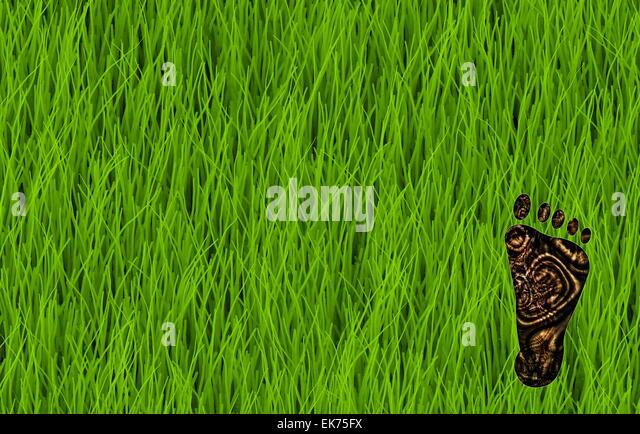 Carbon Footprint - Stock Image
