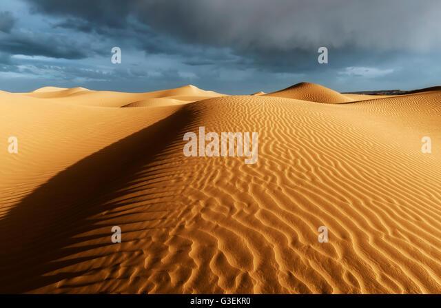 Sahara sand dunes with stormy, cloudy sky. - Stock Image