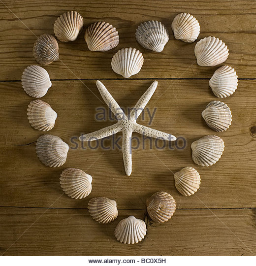 Sea shell heart - Stock Image