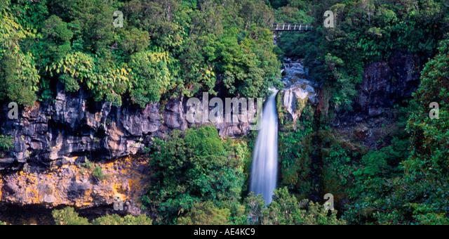 New Zealand Mount Egmond national park north island Dawson falls - Stock Image