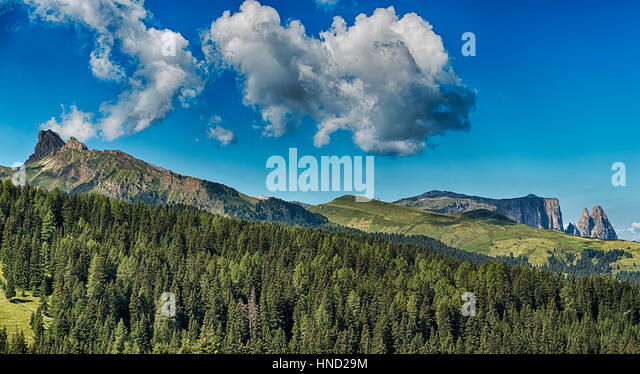 Landscape of the mountains Denti di Terra Rossa and Alpe di Siusi in summer season with the forest in foreground, - Stock Image